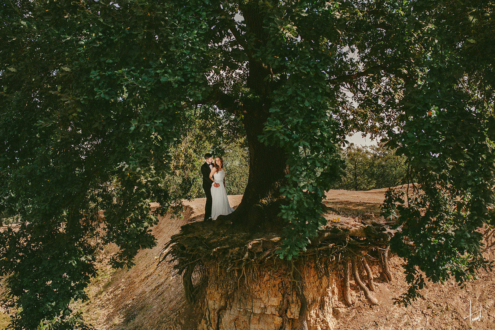 Alexandra Lucian - fotograf nunta Iasi - Terente 01