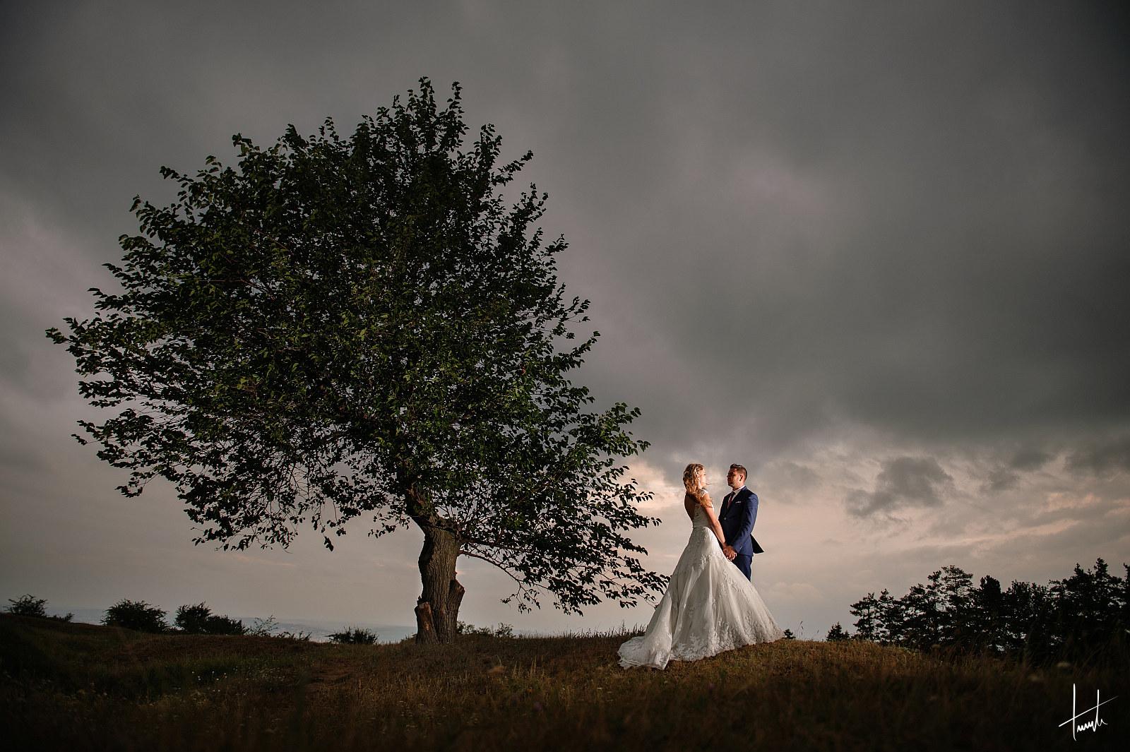 Ana-Maria Mihai - fotograf nunta 16