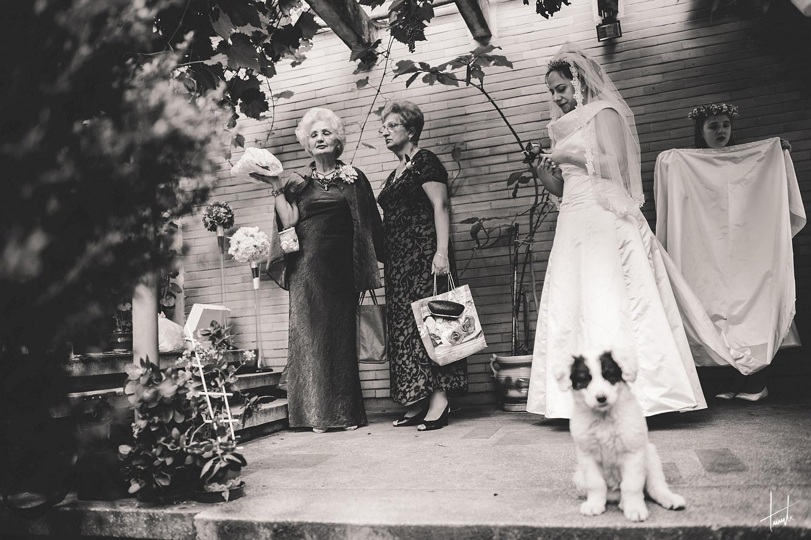 Veronica Claudiu foto nunta 08